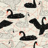 Безшовная картина с плавать черно-белые лебеди рука нарисованная птицами бесплатная иллюстрация