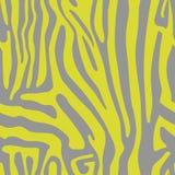 Безшовная картина с покрашенной кожей зебры Стоковое Фото