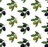Безшовная картина с покрашенными оливками нарисованная ветвью оливка руки Оливки иллюстрации ВЕКТОРА, зеленых и черных иллюстрация вектора
