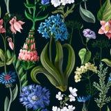 Безшовная картина с полевыми цветками на темной предпосылке также вектор иллюстрации притяжки corel бесплатная иллюстрация