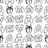 Безшовная картина с породами собаки Бульдог, лайка, маламут, Retriever, Doberman, пудель, мопс, Shar Pei иллюстрация штока