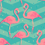 Безшовная картина с птицами фламинго иллюстрация штока
