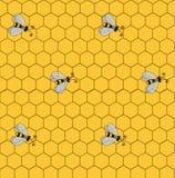 Безшовная картина с пчелами на предпосылке сотов Стоковые Изображения RF