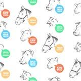 Безшовная картина с различными животноводческими фермами Стоковое Изображение