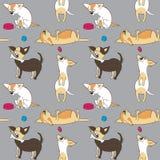 Безшовная картина с различными собаками Стоковые Фотографии RF