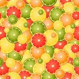 Безшовная картина с различными цитрусами куска Стоковая Фотография RF