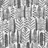 Безшовная картина с рождественской елкой a Стоковое Фото