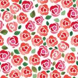 Безшовная картина с розами акварели покрашенными рукой Стоковая Фотография RF