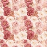 Безшовная картина с розами и листьями Стоковое Изображение