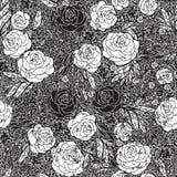 Безшовная картина с розами цветков, vector флористическое Стоковое Изображение