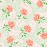 Безшовная картина с розами Стоковые Изображения RF