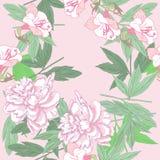 Безшовная картина с розовыми пионами и цветками иллюстрация вектора