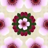 Безшовная картина с розовыми цветками вишни Стоковые Изображения
