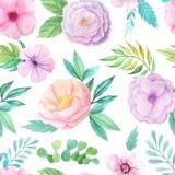 Безшовная картина с розовыми цветками и листьями Стоковое Изображение RF