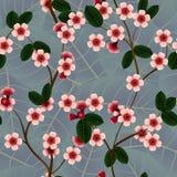 Безшовная картина с розовыми цветками и лист вишни Стоковые Фото