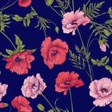 Безшовная картина с розовым и красным маком цветет в ботаническом st Стоковые Изображения RF