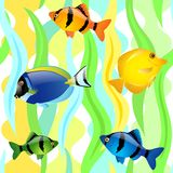 Безшовная картина с рыбами Стоковое Фото