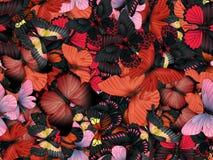 Безшовная картина с серией различных butterflys Стоковая Фотография