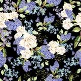 Безшовная картина с сиренью и розами акварели цветет Стоковое Изображение