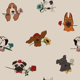 Безшовная картина с собаками держа цветки стоковая фотография rf
