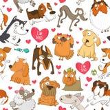Безшовная картина с собаками и сердцами Стоковое фото RF