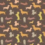 Безшовная картина с собакой Стоковые Изображения RF