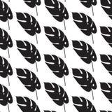 Безшовная картина с стильными листьями ладони Графически естественная печать Стоковое фото RF
