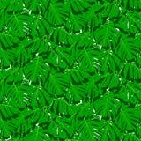 Безшовная картина с тропическими листьями Стоковые Изображения