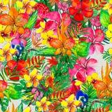 Безшовная картина с тропическими цветками желтый цвет акварели стародедовской предпосылки темный бумажный стоковое фото