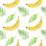 Безшовная картина с тропической ладонью выходит, бананы Стоковые Изображения RF