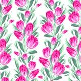 Безшовная картина с тюльпанами весны для ткани. Стоковые Фото
