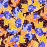 Безшовная картина с цветением яблока Круглый калейдоскоп цветков и флористических элементов Стоковая Фотография