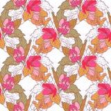 Безшовная картина с цветением яблока Круглый калейдоскоп цветков и флористических элементов Стоковые Фото