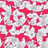 Безшовная картина с цветением яблока Круглый калейдоскоп цветков и флористических элементов Стоковое Фото