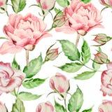 Безшовная картина с цветками акварели Поднял и Иллюстрация вектора