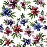Безшовная картина с цветками акварели иллюстрация штока