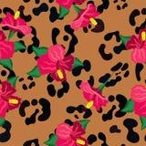 Безшовная картина с цветками гибискуса и кожами печати экзотического животного r иллюстрация штока