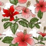 Безшовная картина с цветками гибискуса Стоковая Фотография