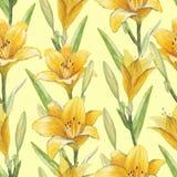 Безшовная картина с цветками лилии Стоковое Фото