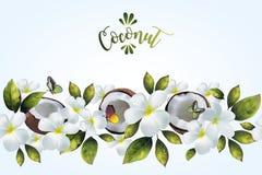 Безшовная картина с цветками и кокосом Стоковое фото RF