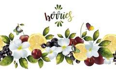 Безшовная картина с цветками и смешиванием плодоовощ Стоковая Фотография