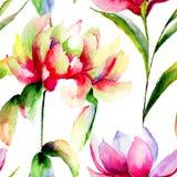 Безшовная картина с цветками магнолии и пиона Стоковая Фотография