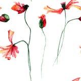 Безшовная картина с цветками маков Стоковые Изображения