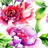 Безшовная картина с цветками пионов Стоковые Изображения