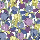 Безшовная картина с цветками радужки иллюстрация вектора