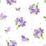 Безшовная картина с цветками сирени также вектор иллюстрации притяжки corel Стоковые Фотографии RF