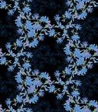 Безшовная картина с цикорием Круглый калейдоскоп цветков и флористических элементов Стоковая Фотография