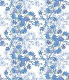 Безшовная картина с цикорием Круглый калейдоскоп цветков и флористических элементов Стоковое Фото