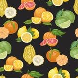 Безшовная картина с цитрусовыми фруктами на черной предпосылке Стоковые Изображения RF