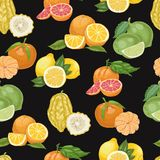 Безшовная картина с цитрусовыми фруктами на черной предпосылке Стоковые Изображения